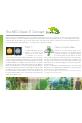 Preview Page 5 | NEC MultiSync EA191M Monitor Manual